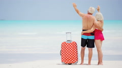 Male female Caucasian seniors in swimwear on a tropical beach with a suitcase - stock footage