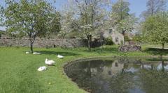 Foolow Village, Derbyshire, England, UK, Europe Stock Footage