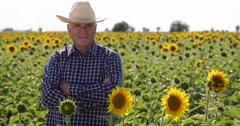 Satisfied Proud Confident Farmer Present Sunflower Field Farmland Business Crop Stock Footage