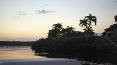 Stock Video Footage of Palm Tree Sunrise