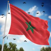 Flag of Morocco - stock illustration