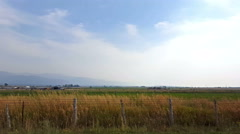Wind blows grass in foreground background mountains fade into smoky haze Stock Footage