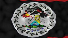 Waving Flag Belize Stock Footage