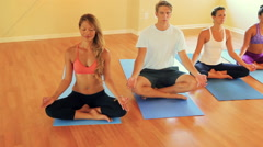Group of People Relaxing and Doing Yoga. Wellness and Healthy Lifestyle. - stock footage