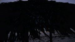 Thatch beach tiki hut at sunrise - stock footage