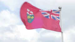 Ontario Canada provincial flag flying in the summer wind Stock Footage