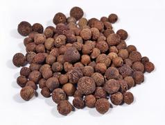 Heap of allspice on a white - stock photo