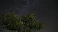 Timelapse of night sky Stock Footage