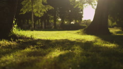 Two Girls are Running Away in Sunlight at Park Stock Footage