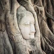 Buddha head in Wat Mahathat Stock Photos