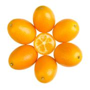 Oval Kumquats Forming A Sun Symbol On White Background Stock Photos