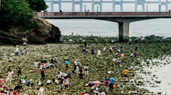 Visitors play in the famous Xinghai Park of Dalian, China. Stock Footage