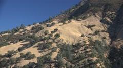 Ram skull, dry California landscape Stock Footage