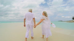 Retired senior couple happy dancing together on tropical beach - stock footage