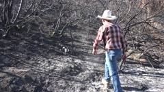Stock Video Footage of Rancher find ram skull after fire
