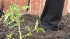 Preparing home garden for new plants Stock Footage