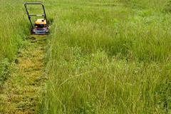 Mowing the Lawn Stock Photos