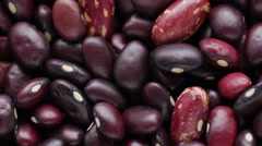 Haricot bean. Stock Footage