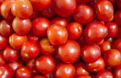 Ultimate Tomatoes Stock Photos