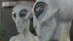 "Close up profile ""Greys"" Grey gray alien head model display in UFO museum - stock footage"