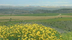 Beautiful field with flowers, hills, amazing landscape panorama, natural beauty Stock Footage