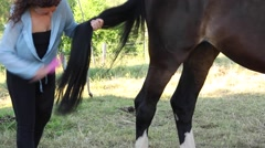 A woman cards a long black horse tail Stock Footage
