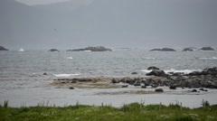 Waves hitting sea shore boulders with green pasture foreground in summer Stock Footage