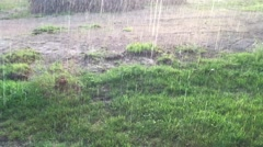 Heavy rain downpour in summer Stock Footage