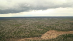 RUSSIA. Surgut - 2014: Aerial view of the beauty forest landscape Stock Footage