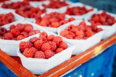 Assortment Of Fresh Organic Red Berries Raspberries At Produce L - stock photo