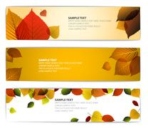 Fresh natural fall vector horizontal banners with leafs - stock illustration