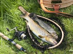 beautiful still life with trout and fishing tools - stock photo