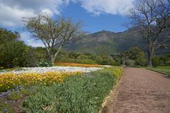 Botanical Gardens - stock photo