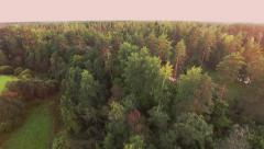 Flight over the trees. Sunset Stock Footage