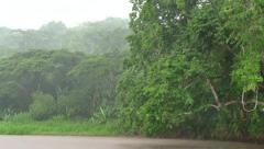 Storm Rain Rainstorm In Jungle Along River In Costa Rica Stock Footage