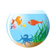 Stock Illustration of Various fishes in aquarium