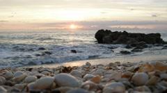 Beach Sunrise Seashells Florida Video 4k HD Ocean Sound Stock Footage