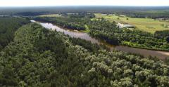 4K - View of the forest river. scene 01 Stock Footage