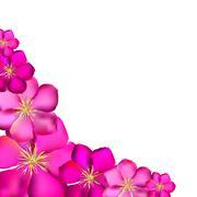 Stock Illustration of Pink Clematis Background Vector Illustration