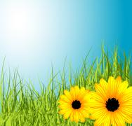 Spring meadow with flowers Stock Illustration