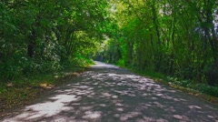 English country lane dappled sunlight and shadows Stock Footage