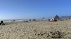 Beach scenery Stock Footage