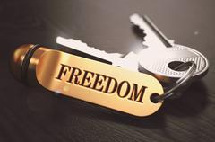 Keys to Freedom. Concept on Golden Keychain - stock illustration