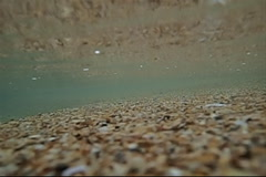 Sand in wave stream Stock Footage