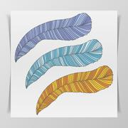 Set of three hand-drawn graphic Feathers - stock illustration