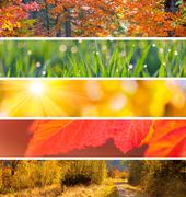 Collection of Autumn Headers -  fall season abstract  backgrounds - stock photo