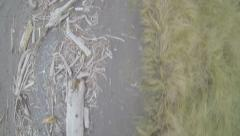 Aerial View: Overhead View Of Driftwood/Beach Grass Stock Footage