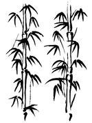 Black and white illustration. Bamboo Piirros