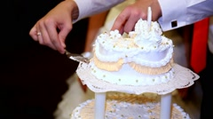 Cutting and folding plates on the wedding cake. Wedding couple. Stock Footage