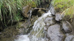 Fresh and clean fount water flowing from source to stream Stock Footage